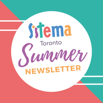 Summer newsletter graphic in Sistema colours